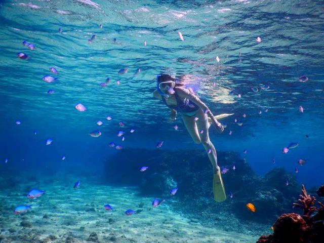 「奄美大島に行くならシュノーケリングを楽しもう!体験方法も合わせてご紹介」のアイキャッチ画像