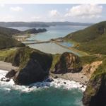 奄美大島に行くならホノホシ海岸は外せないおすすめスポット!