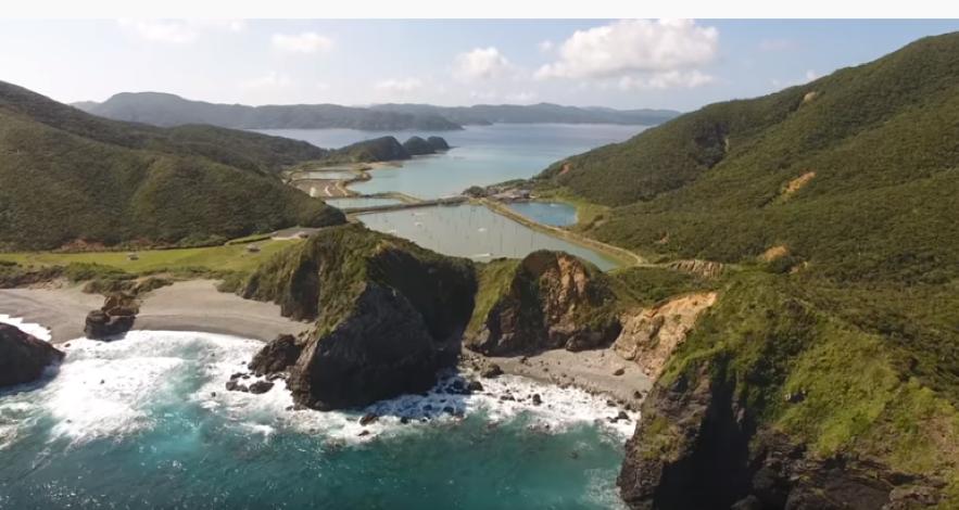 「奄美大島に行くならホノホシ海岸は外せないおすすめスポット!」のアイキャッチ画像