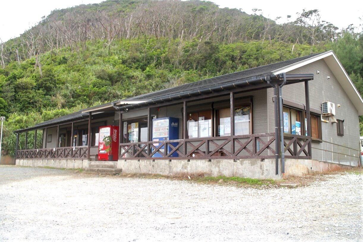 「ハブのことを知るには原ハブ屋へ!奄美大島にきたらここでハブの知識とショーを体験しよう!」のアイキャッチ画像
